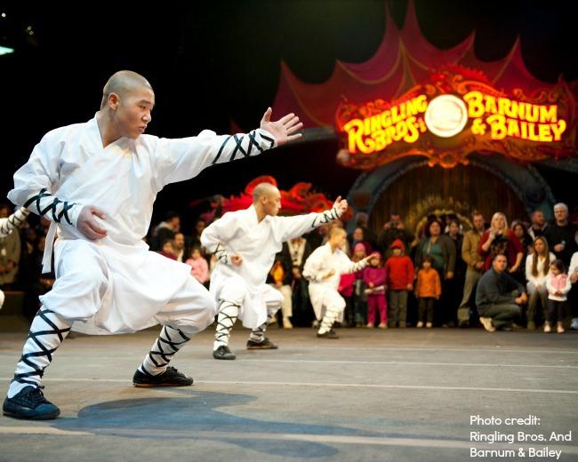 martial arts at Ringling Brothers Barnum and Bailey circus