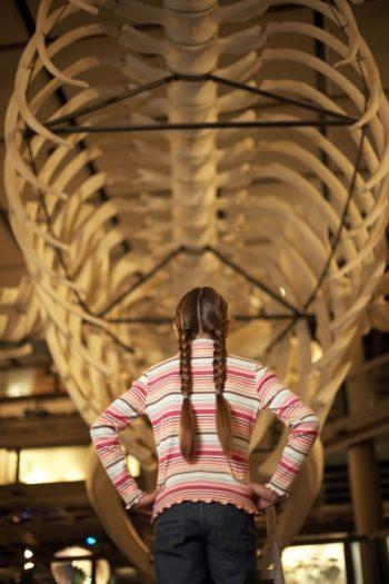 Ways to Engage Kids at Museum Visits - Kids Activities Blog