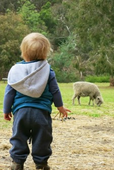 10 Things to Do with Kids in Melbourne, Australia