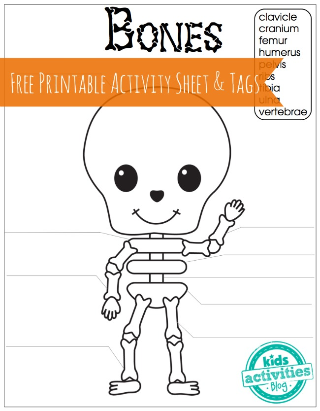 skeleton bones free printable activity sheet and tags for kids - Free Kids Printable Activities