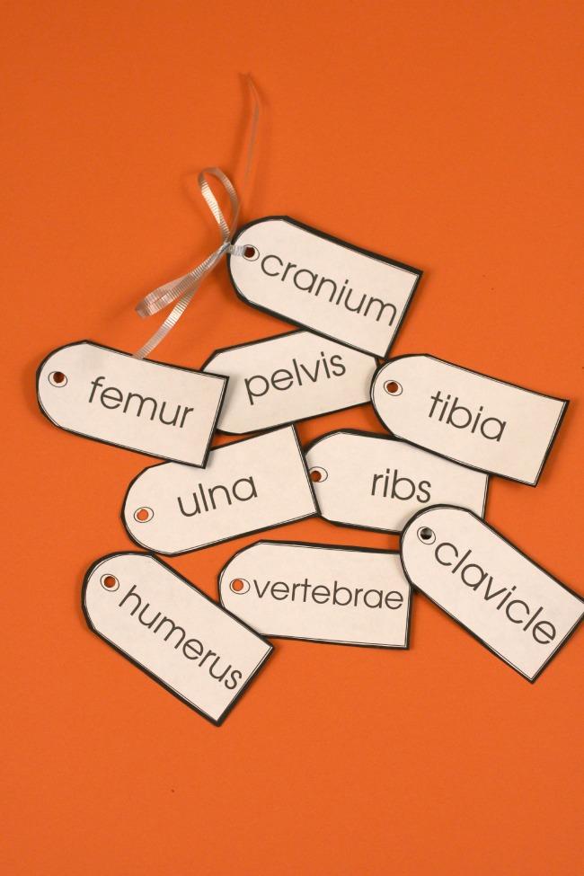 skeleton bones printable tags for kids