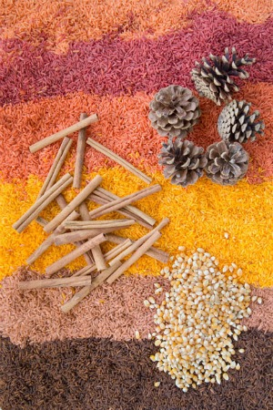 Fall Sensory Bin for Kids featured on Kids Activities Blog