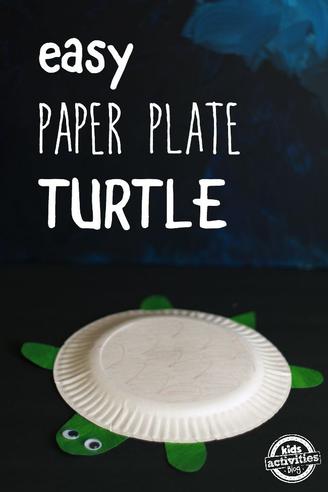 Paper Plate Turtle Main Image