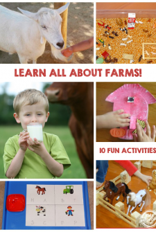 10 Fun Farm Activities