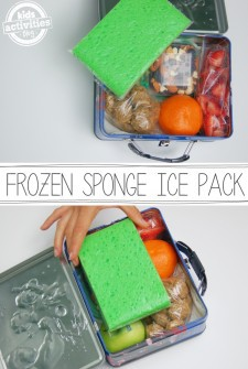 frozen sponge ice pack