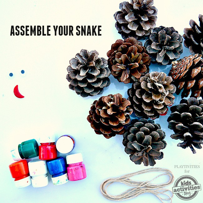 MATERIALS NEEDED FOR PINE CONE CRAFT