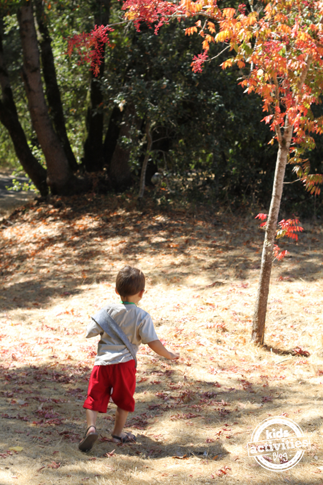 Fall Nature Scavenger Hunt With Free Printable