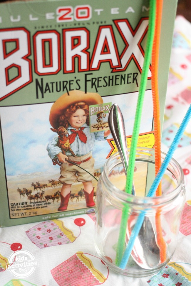 supplies used to make crystals with borax and pipe cleaners