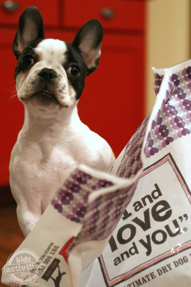 I and Love and You Pet Food with Panda - Kids Activities Blog