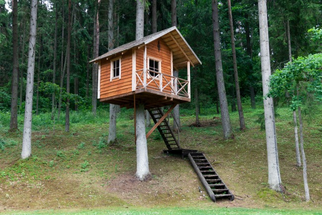 playhouse treehouse i love this one it is such a cute playhouse and then the bonus part is that it is up in the tree from istockcomcebas - Kids Tree House