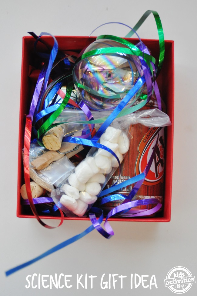 gift your kids an experience with this science kit you can make