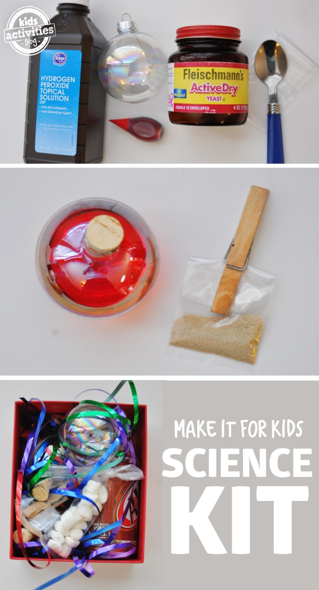 science kit gift idea