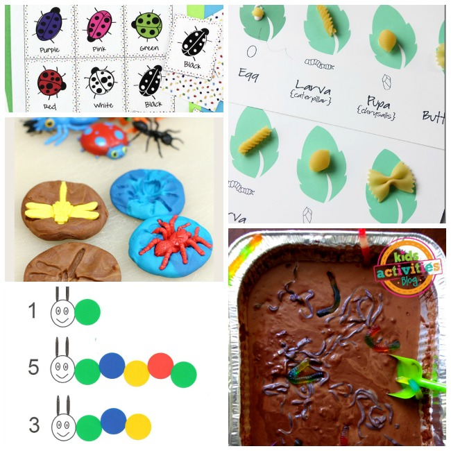 bug activities for kids