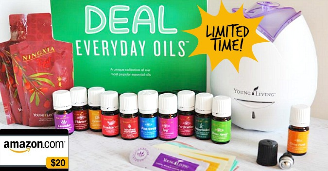Buy Everyday Oils YL