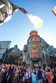 16 Wizarding World of Harry Potter Hidden Secrets