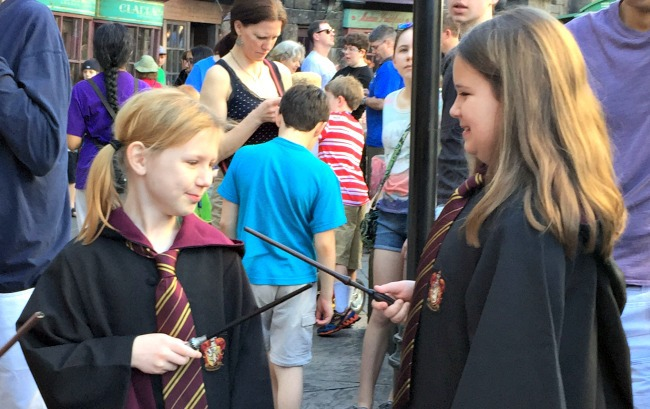 magic wand harry potter