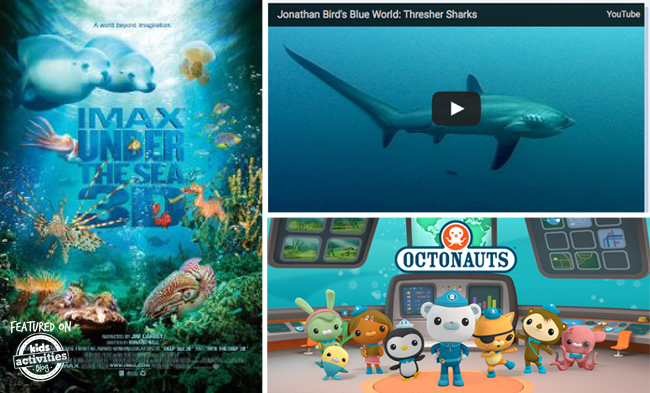 educational tv about the ocean