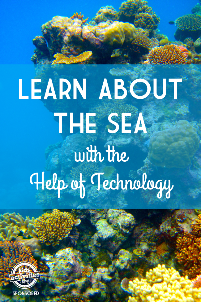 learn about the ocean