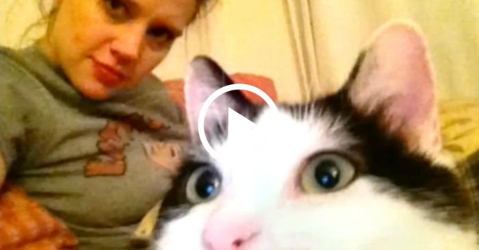 kate-loves-her-cat
