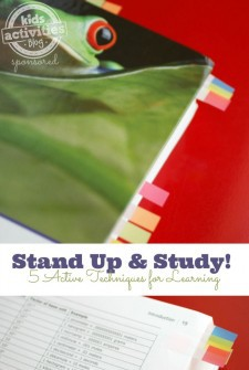 5 Active Learning Techniques:  Stand Up & Study!