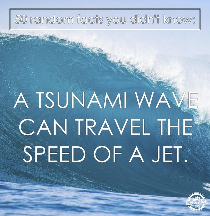 a tsnuami wave