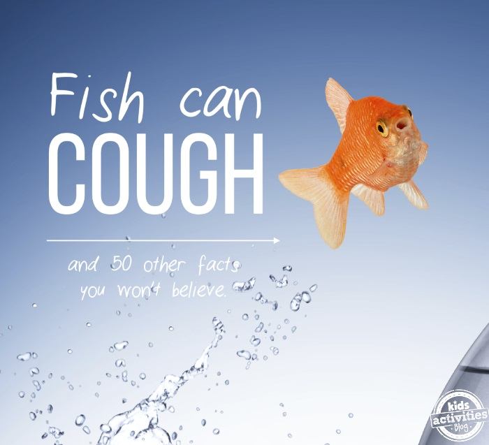 cool kid facts you won't believe - fish can cough