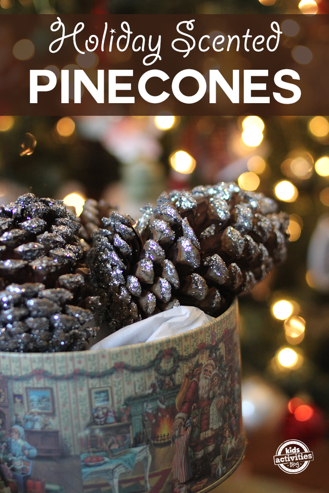 house of pinecones holiday scented pinecones
