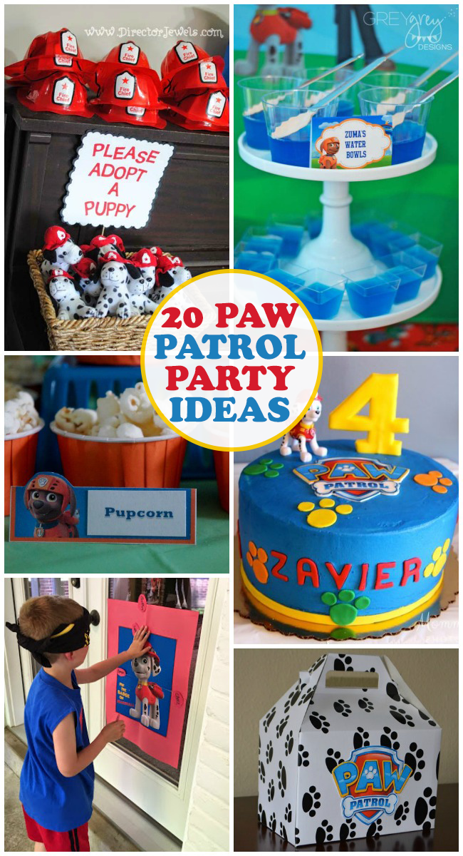 20 PAW Patrol Birthday Ideas