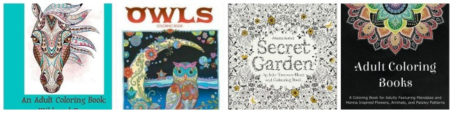adult coloring books1