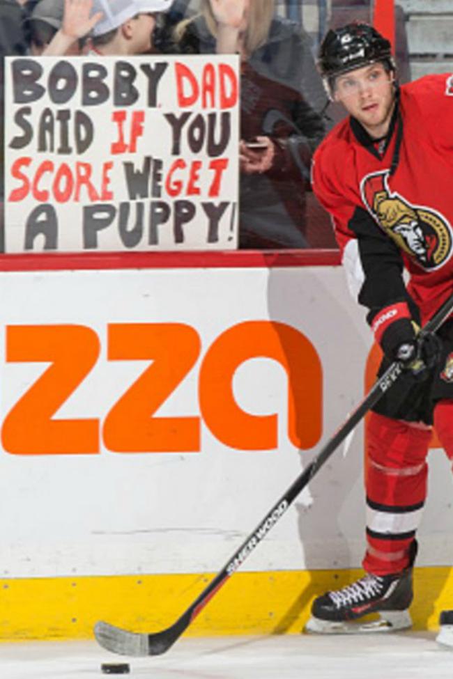 hockey puppy pressure