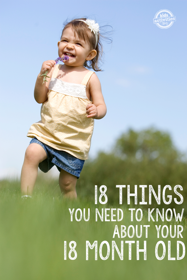 18 Things You Need To Know About Your 18 Month Old