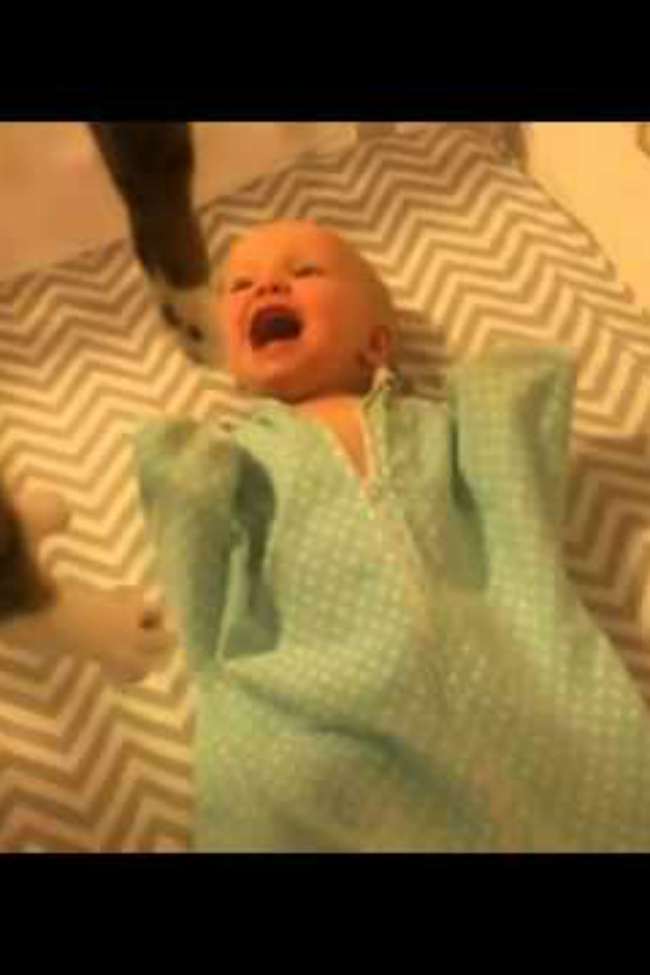 baby excited to see cat