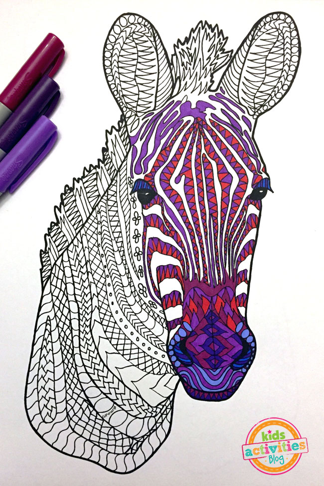 Young Zebra Zentangle