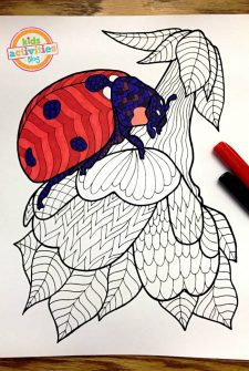 Coloring Pages for Kids – Ladybug Zentangle