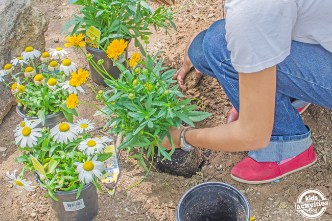 tips for a successful garden with kids