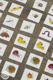 DIY Insect Memory Game
