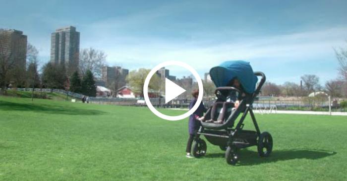 adult stroller