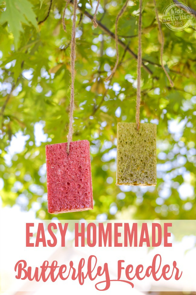 easy homemade butterfly feeder