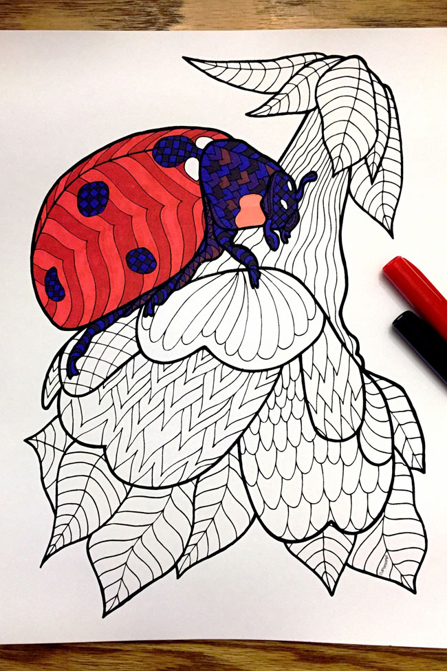 Ladybug Zentangle PIC - 4x6