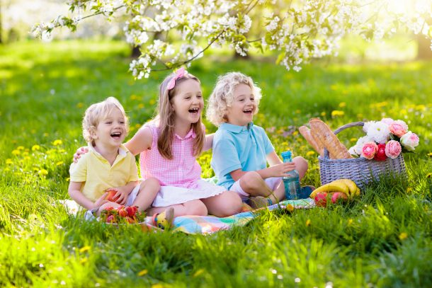 Best Family Picnic Foods