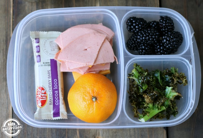 5 Healthy Back to School Lunch Ideas