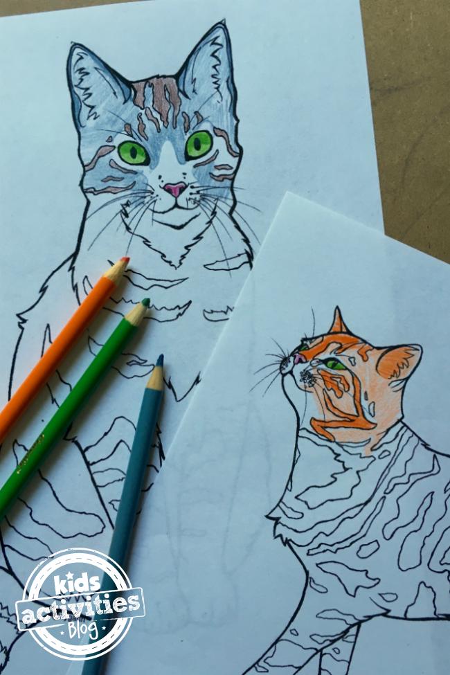 cat_featured