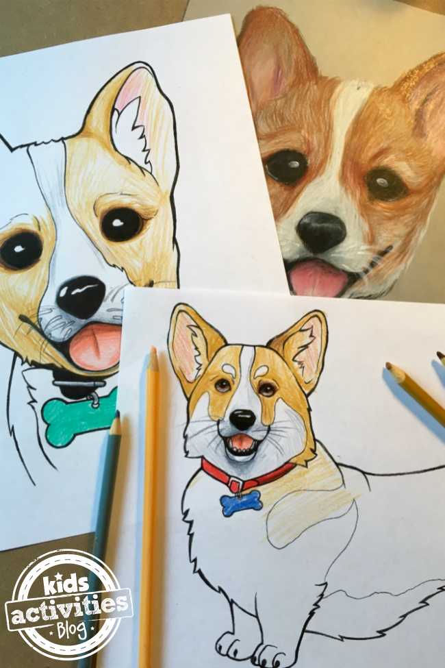 corgi_featured