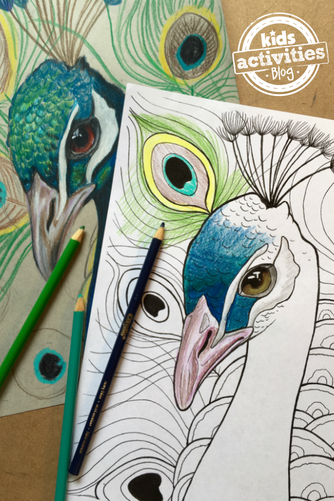 Best Free Peacock Coloring Pages: Print & Color [Includes ...