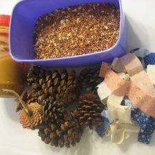 Pine Cone Bird Feeder Craft