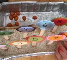 Counting Garden: Preschool Learning Activity