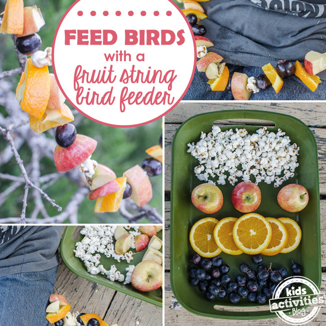 fruit garland string bird feeder