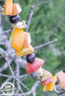 Make a Fruit Garland Bird Feeder!