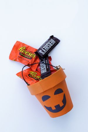 Pumpkin Treat Cup