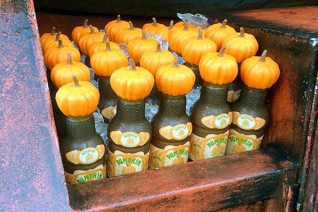 Harry Potter's Pumpkin Juice - the Healthy Halloween Treat